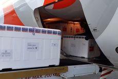 Paraíba distribui mais de 62 mil doses de vacina neste domingo (19)