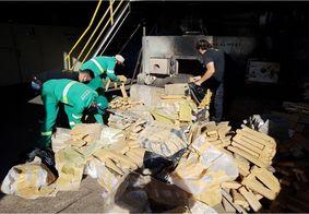 Material foi destruído pela Polícia Federal