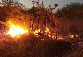 Ação criminosa e baixa umidade potencializam queimadas na PB
