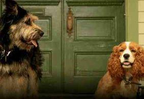 Disney divulga fotos de cachorros que farão live-action de 'A Dama e o Vagabundo'
