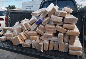 Polícia apreende mais de 300 kg de drogas na Zona Sul de João Pessoa