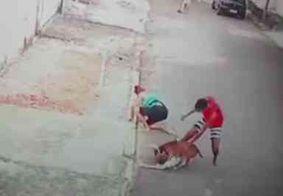 Vídeo: homem salva criança de 5 anos de ataque de pitbull