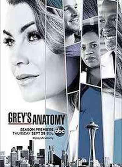 Fãs de 'Grey's Anatomy' se revoltam nas redes sociais com final de Karev