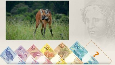 Nova cédula de R$ 200 entra em circulação na quarta-feira (2)
