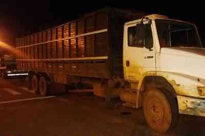 Caminhões irregulares carregados com gado para abate são apreendidos na Paraíba