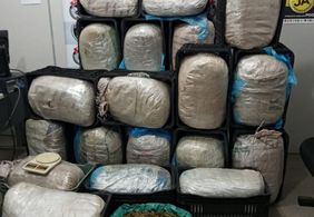 Polícia Civil apreende quase 200 kg de maconha em Campina Grande