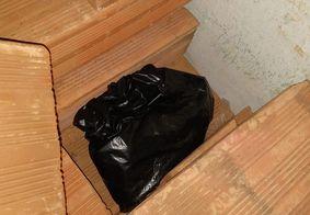 Drogas escondidas em tijolos e vigiadas por pitbull são apreendidas na PB