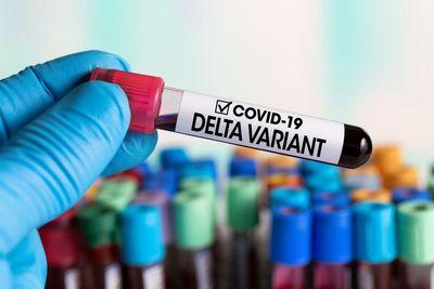 A variante Delta foi identificada pela primeira vez na Índia