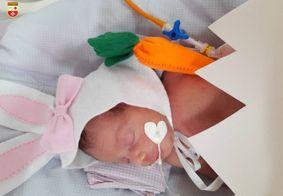 Bebês de UTI neonatal fazem ensaio fotográfico para a Páscoa