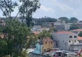 Criança morta após ataque de cães é enterrado em SP