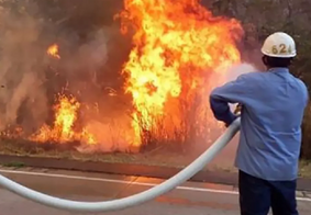 Mais de 500 mil hectares de vegetação são destruídos por incêndio na Bolívia