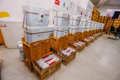 Vacinas da Pfizer chegam ao Brasil nesta quinta (29)