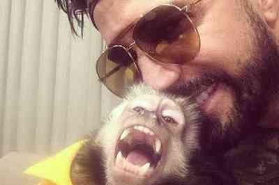 ONG critica Latino por causa de macaco: 'Animal silvestre não é pet'