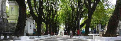 Protocolo para visita aos cemitérios e celebrações é divulgado na Paraíba