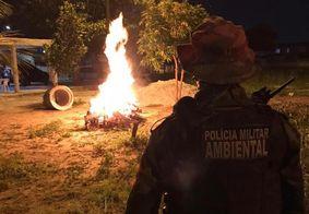 PM recebe mais de 700 denúncias durante véspera de São João na Paraíba