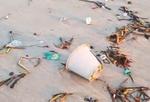 Praia de João Pessoa amanhece com muito lixo na faixa de areia