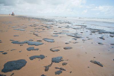 Estudantes da UFPB criam comissão para minimizar desastre com óleo nas praias do Nordeste