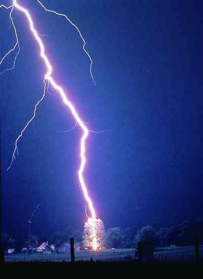 Chuva com raios atinge fazendas do sul do Tocantins e mata mais de 100 animais