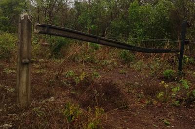 Mais de 100 postes de energia elétrica são derrubados por ventos fortes no TO