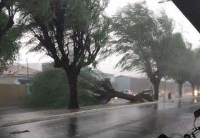 Fortes chuvas causam estragos na cidade de Patos, sertão da PB