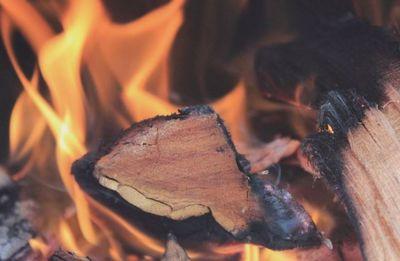 Você viu? Homem morre após sofrer queimaduras em fogueira