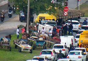 Carroceiros protestam próximo ao CAM, em Água Fria